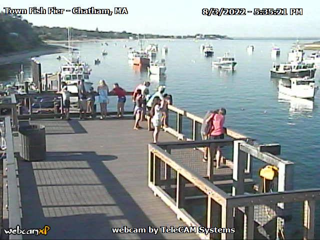 Town Fish Pier Webcams