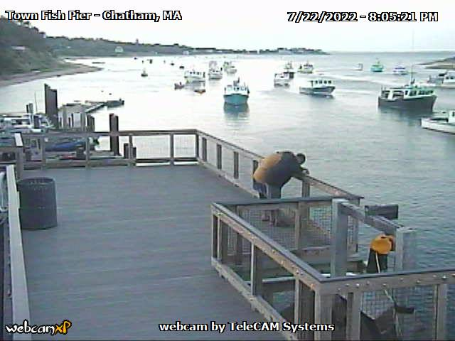 Chatham Fish Pier Webcam