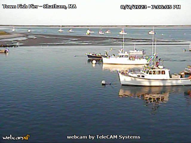 Chatham Fish Pier Webcam